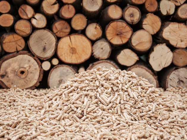 eKapija | German investors interested in building biomass