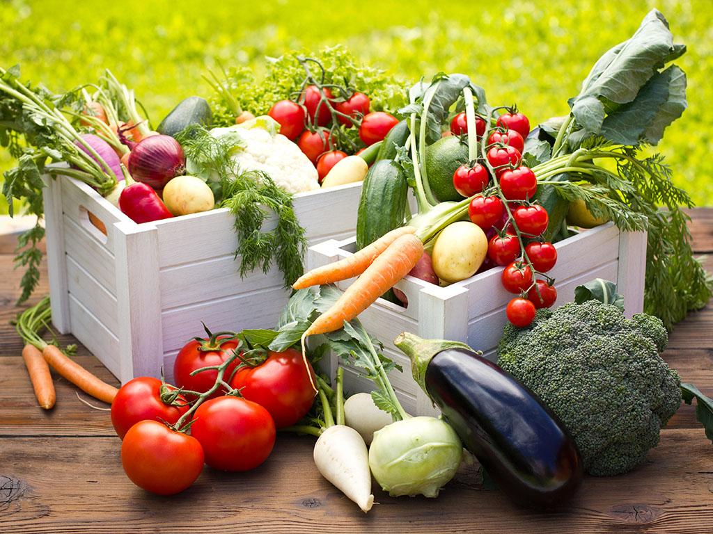 """Imaju """"živo"""" povrće i osvajaju svijet - Slovenački Panorganic primjenjuje inovativni pristup poljoprivredi"""
