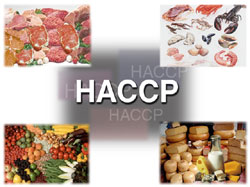 HACCP systems