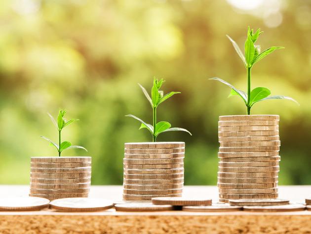 Korona prepolovila strane investicije - Obim i struktura ulaganja bili nedovoljni i u prethodnim godinama