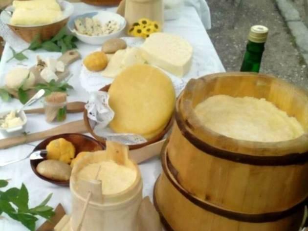 Oživljavanje tradicije duge više od 100 godina - Jedinstvenost skorup kajmaka potvrđena međunarodnim sertifikatom
