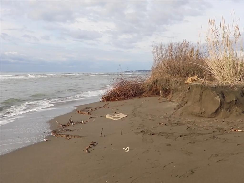 Za zaštitu plaže na Adi Bojani još 300.000 EUR