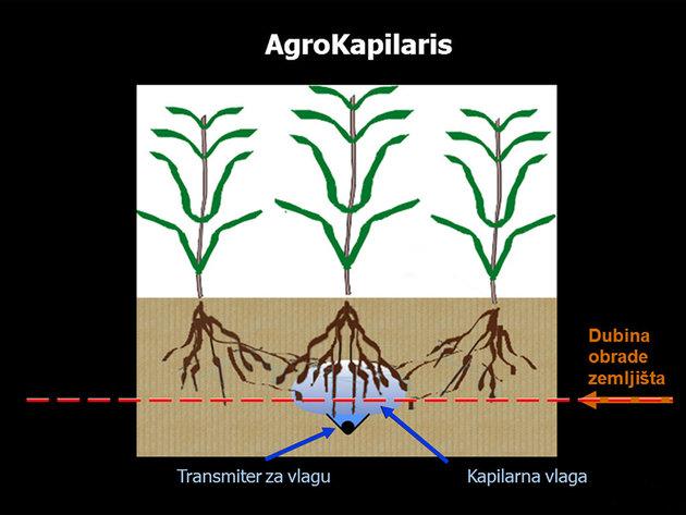 Bewässerung in der Wurzelsystemzone