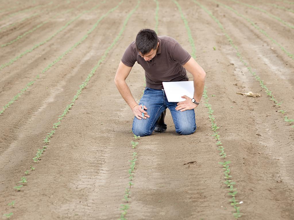 Za bolji prinos poljoprivrednih kultura u Semberiji - Bijeljina i Agrarni fond počinju projekat analize zemljišta