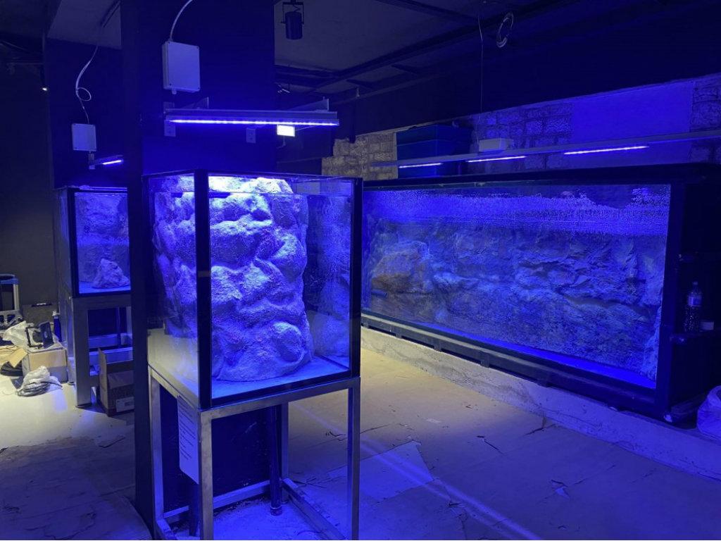 Posjete Akvarijumu Boka od marta ili aprila