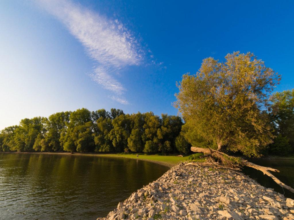 Apatin, spoj i balans energije Dunava i mira ravnice (FOTO)