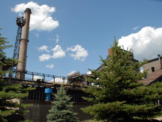 ArcelorMittal obezbijedio 500 sadnica bijelog jasena za pošumljavanje na području Zenice