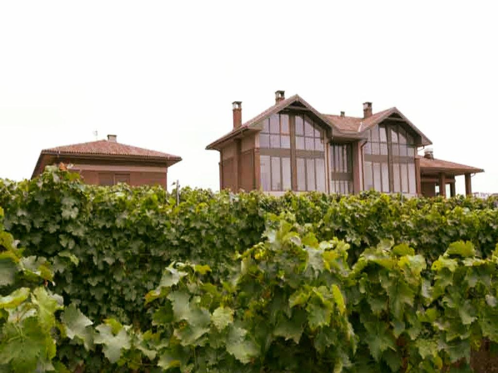 Otvorena vila Ateljea vina Šapat - Neponovljiv doživljaj ljeta na sunčanim obroncima Fruške gore (FOTO)
