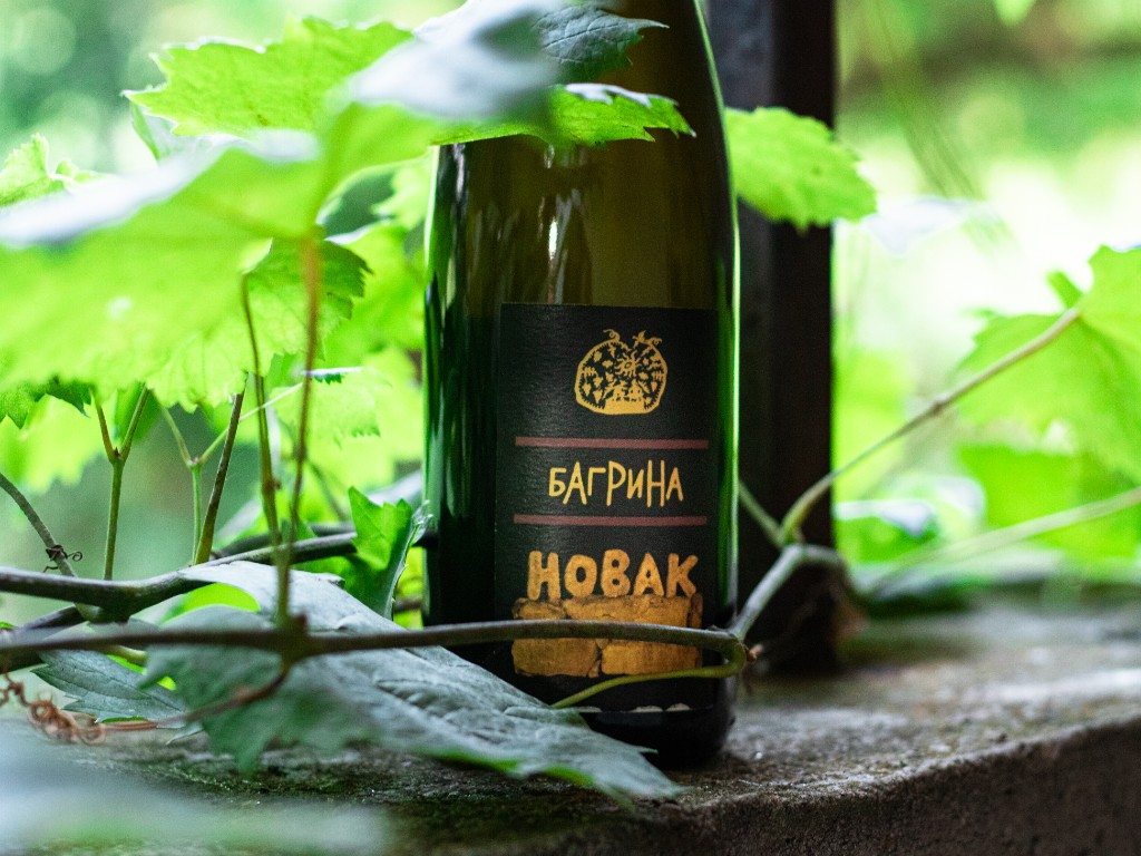 """Bagrina, the star of the """"Secrets of the Vine"""" TV show – What is the future of this Serbian variety and its wine, which used to be served at the English court?"""
