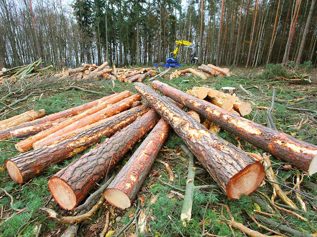 Potpisani petogodišnji ugovori Šuma RS i drvoprerađivača