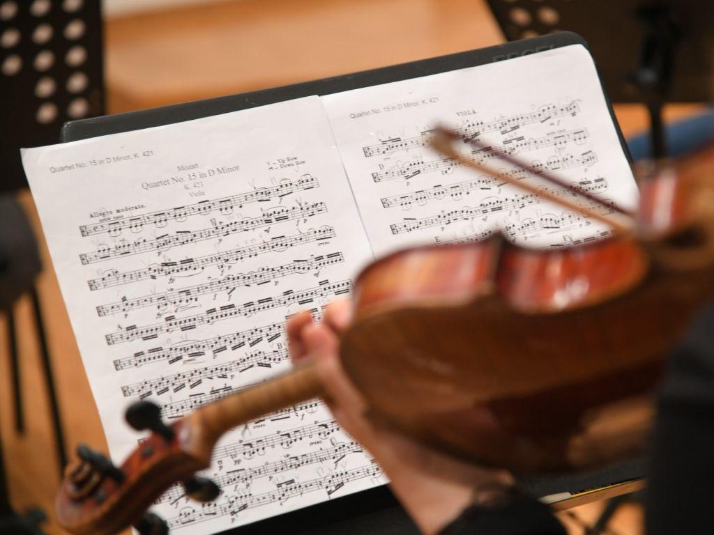 Volite li Bramsa u kombinaciji sa Mocartom? - Novi koncert na kamernoj sceni Beogradske filharmonije