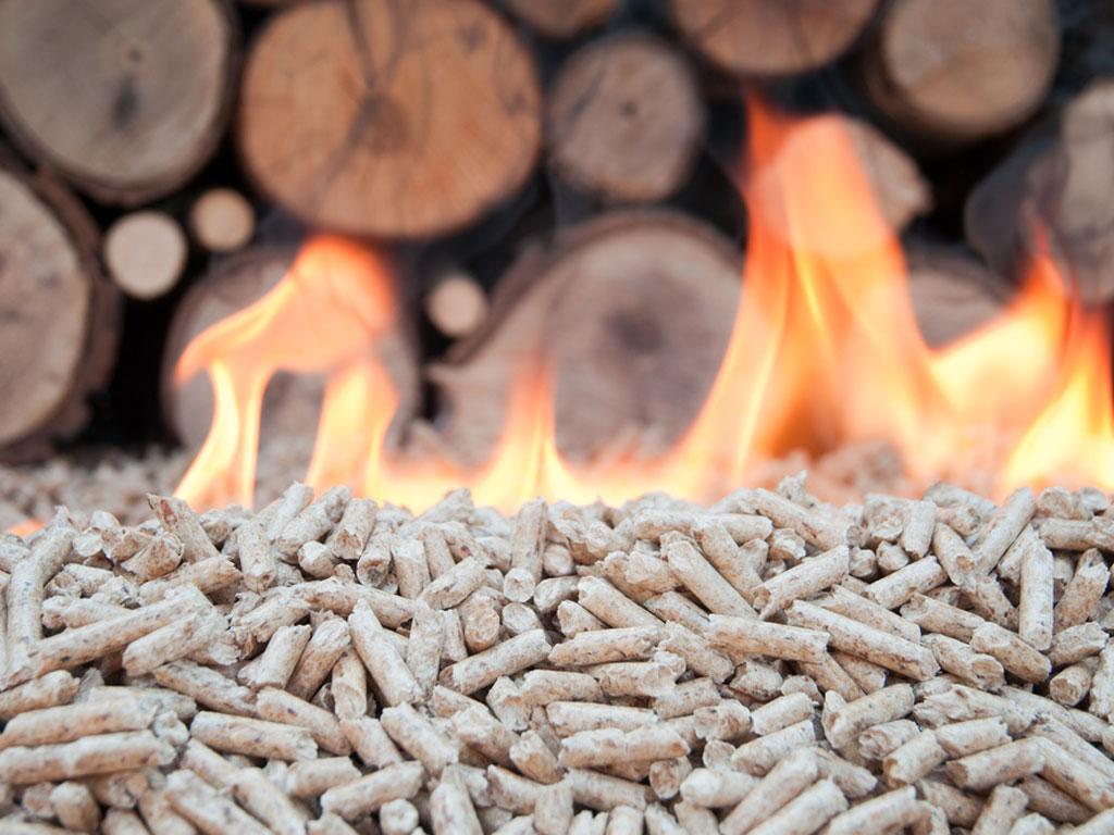 Želite da ulažete u toplane na biomasu - Spreman idejni projekat, čekaju se investitori