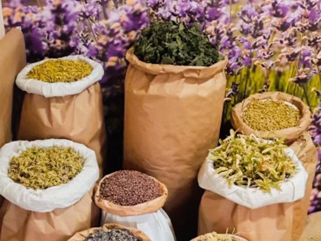 Ljekobilje, šumski plodovi i gljive iz Jelaha na evropskom tržištu - Firma Bonatura izvozi 95% svojih proizvoda