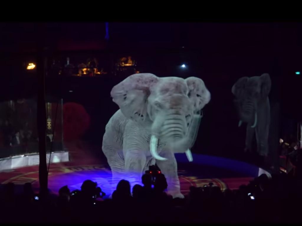 Cirkus bez životinja (VIDEO)