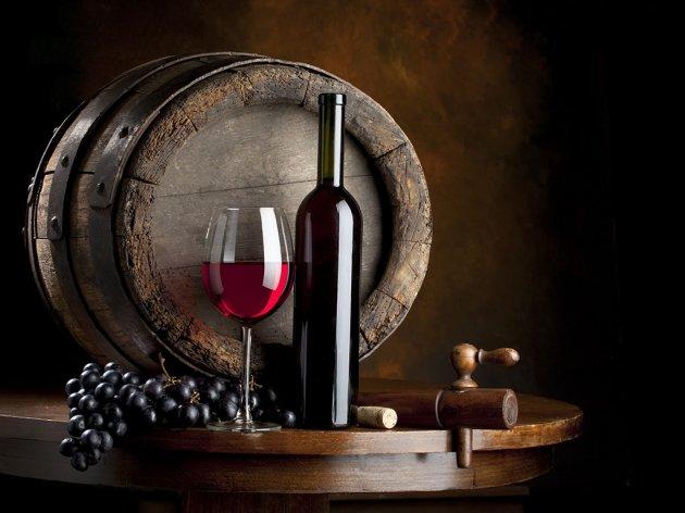 Tim Wineroom pobjednik programa Start up Activator - Umrežavanje ljubitelja vina sa vinarijama i vinskim podrumima