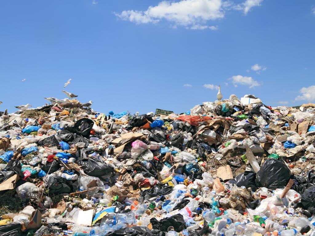 Da li je izgradnja spalionice otpada u Vinči najbolje ekološko rešenje za gorući problem Beograda? - U IFC kažu da ispunjava sve standarde