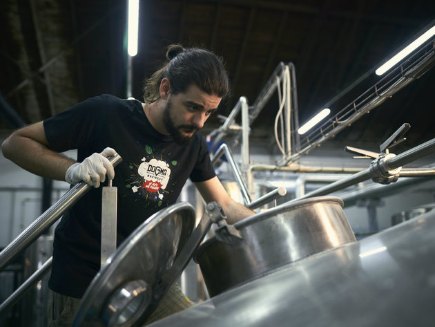 Beer brewing at Dogma