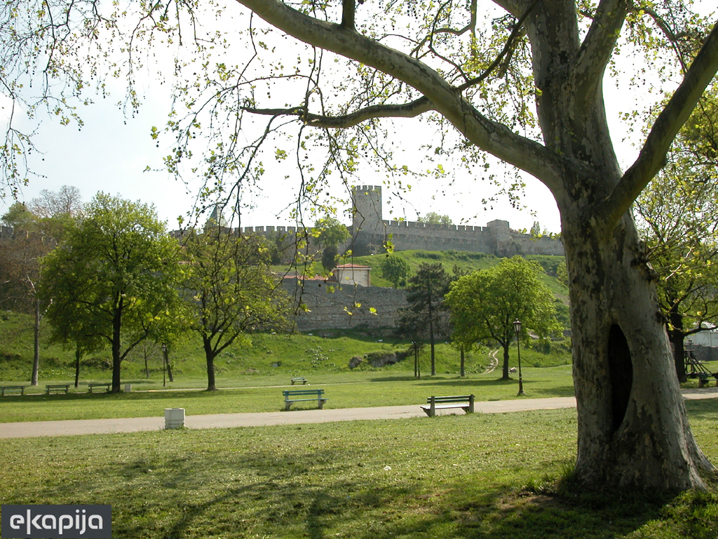 Dovoljno je 20 minuta u parku da se osjećamo srećnije i zadovoljnije