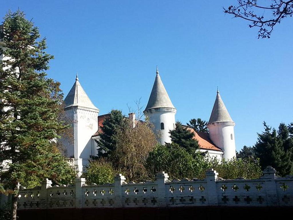 U planu rekonstrukcija dvoraca i vila širom Srbije