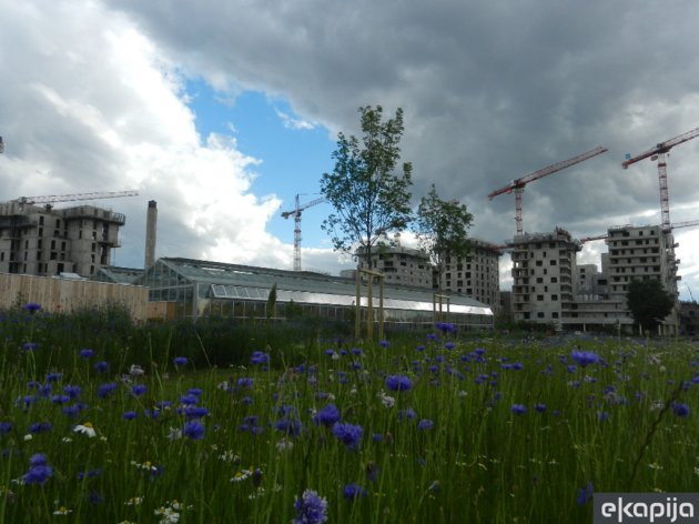 Javni staklenik i gradilišta u okolini