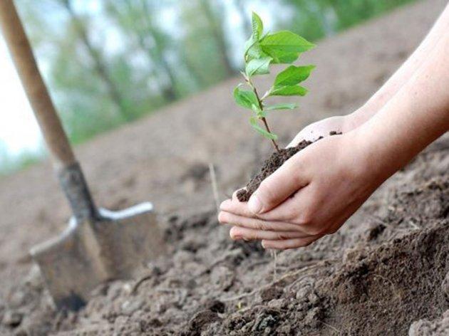 Alma Ras pozvala udruženja da dostave projekte zaštite okoliša - Pobjedničko rješenje u cijelosti finansira kompanija
