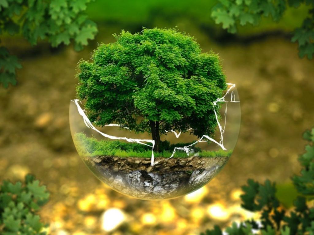 """Okrugli sto """"Klimatske promene i energetika"""" - Borba protiv posledica klimatskih promena  dotiče sve segmente društva, kao i pojedince"""