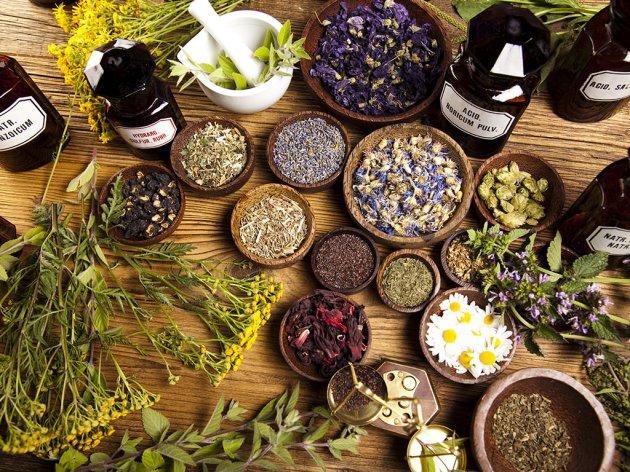 Belopalanačko selo oživelo zahvaljujući lekovitom bilju - Tamnjanica eko plantaže proizvodi ulje lavande za francusko tržište