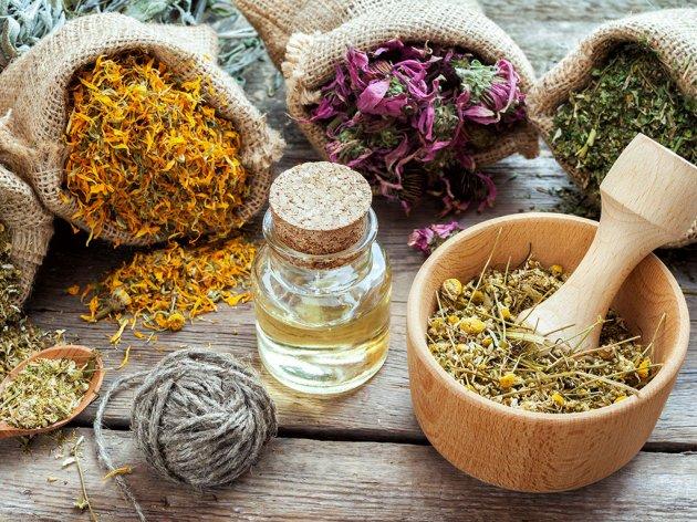 Lekovito bilje sa Romanije na evropskom tržištu - Uskoro i sertifikat za organsku proizvodnju