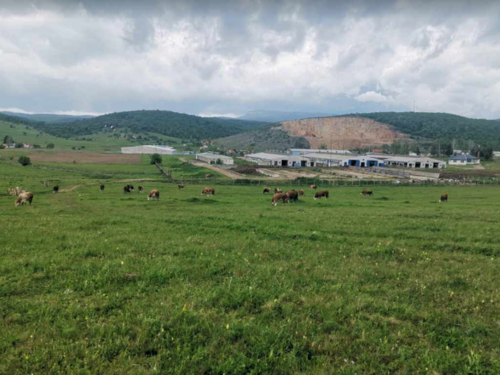 Sokolački mljekari oborili rekord u isporuci mlijeka