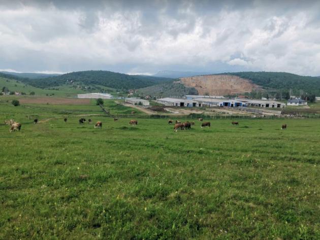 Obnovljena Farma krava Romanija oživljava stočarstvo ovog kraja - U planu povećanje mliječnosti i broja grla