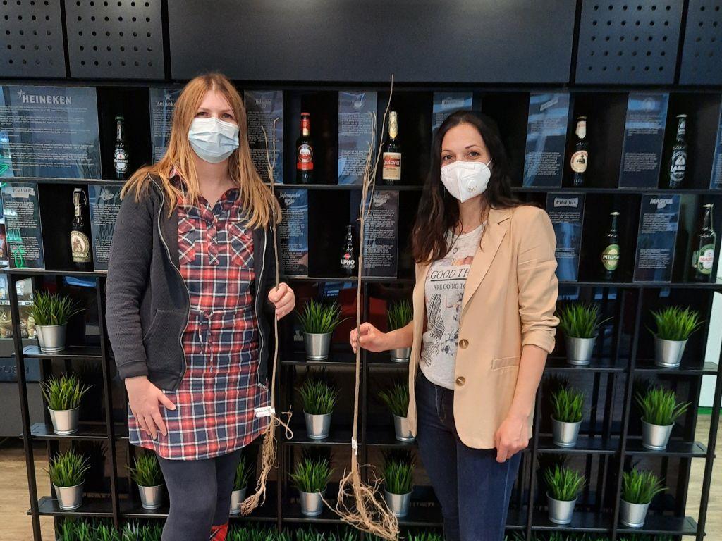 Kompanija Heineken poklonila 1.000 sadnica za tri srpska grada
