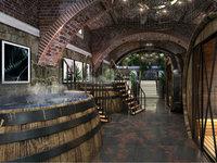 Vršac na jesen dobija impozantan turističko-vinski kompleks - Stari podrum Helvecija imaće i vinski spa, luks apartmane, muzej i restoran sa binom (FOTO)