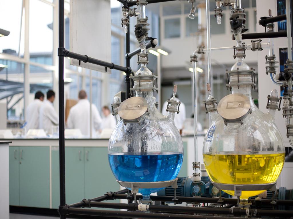 Naučnici iz Srbije uspješno pretvaraju alge u biodizel - Nova postignuća mogla bi da značajno unaprijede proizvodnju