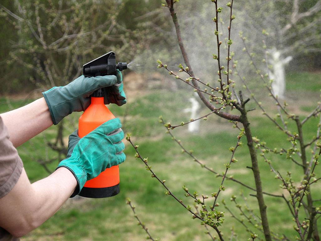 (BIH) Donijet Spisak aktivnih materija dozvoljenih za upotrebu u fitofarmaceutskim sredstvima u Bosni i Hercegovini