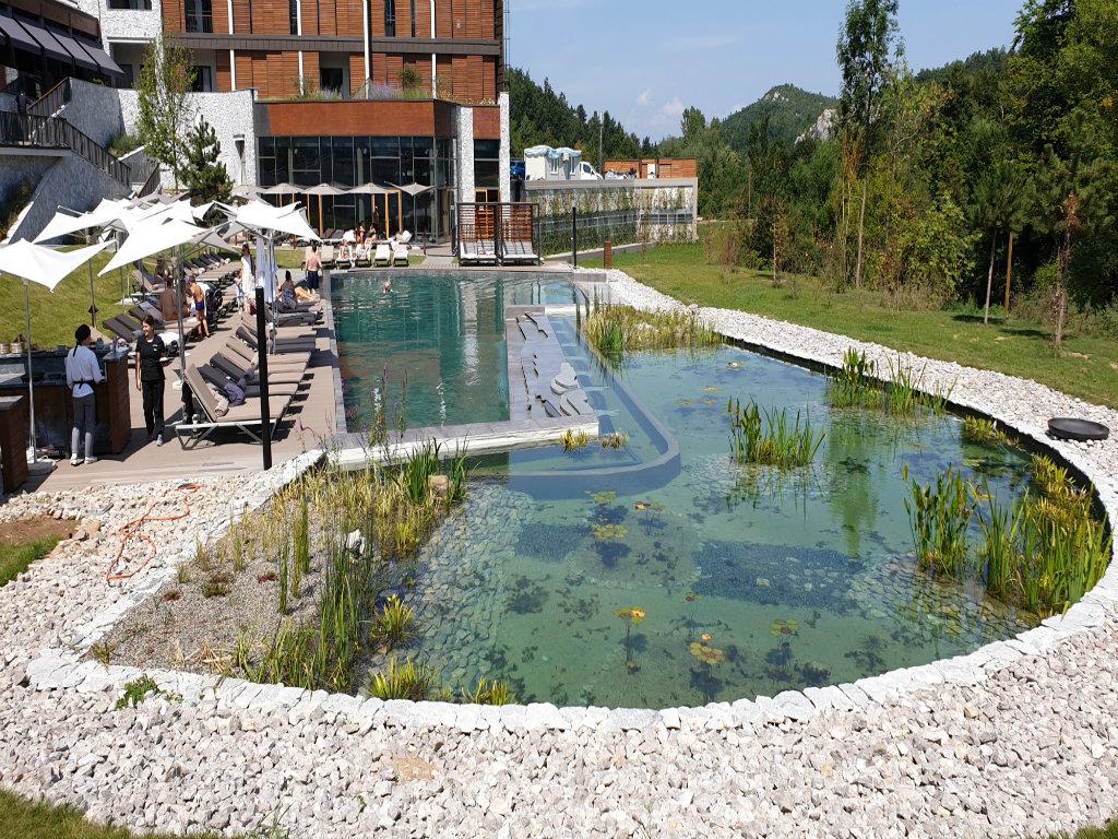 Najnovija tehnologija prirodnog prečišćavanja vode u bazenima - Kompanija Hidronova Plus umesto hemije koristi alge i biljke (FOTO)
