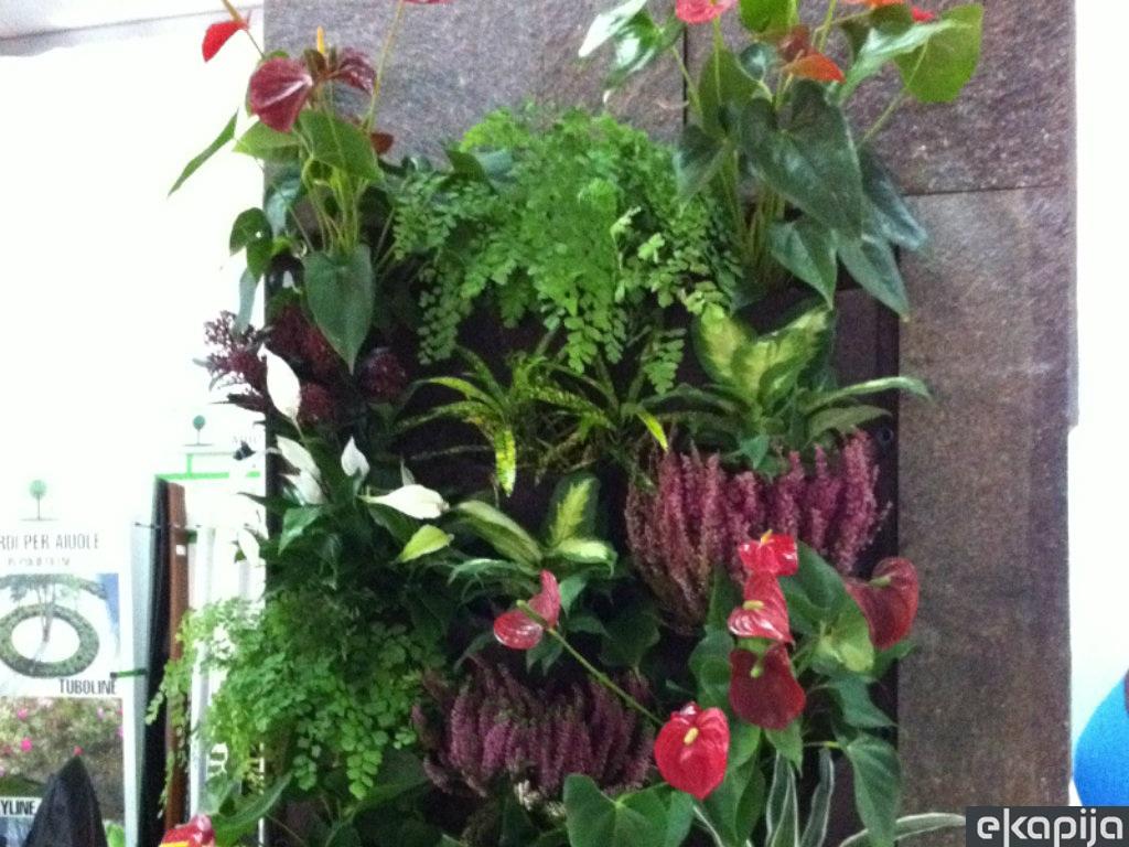 Cveće kao simbol novog početka - Otvoren 25. Međunarodni sajam hortikulture