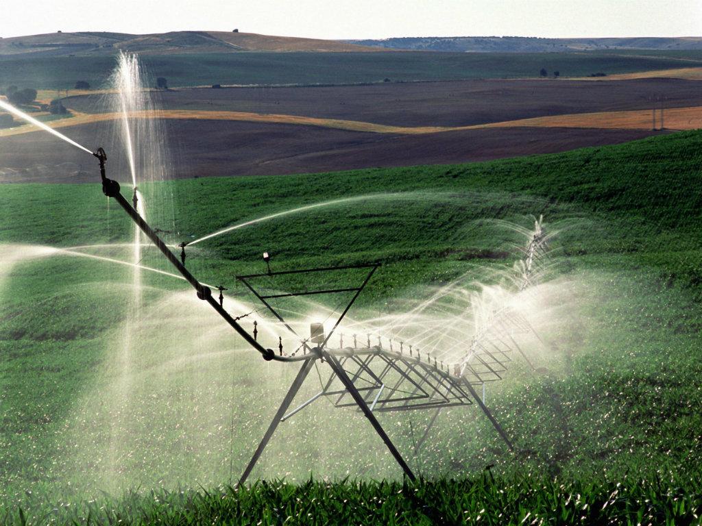 Španska iskustva za srpski agrar na Međunarodnom sajmu poljoprivrede u Novom Sadu
