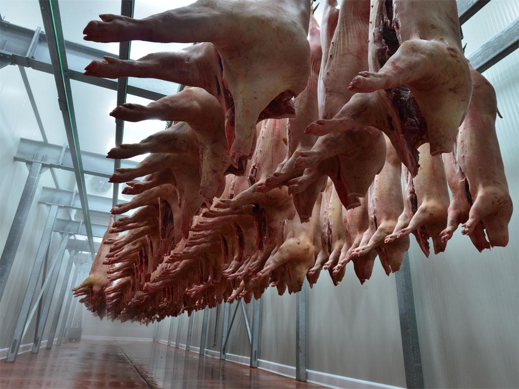 BiH na korak do izvoza svinjskog mesa u Sjevernu Makedoniju - Košarac traži podršku EU za izvoz žive stoke na tržišta trećih zemlja