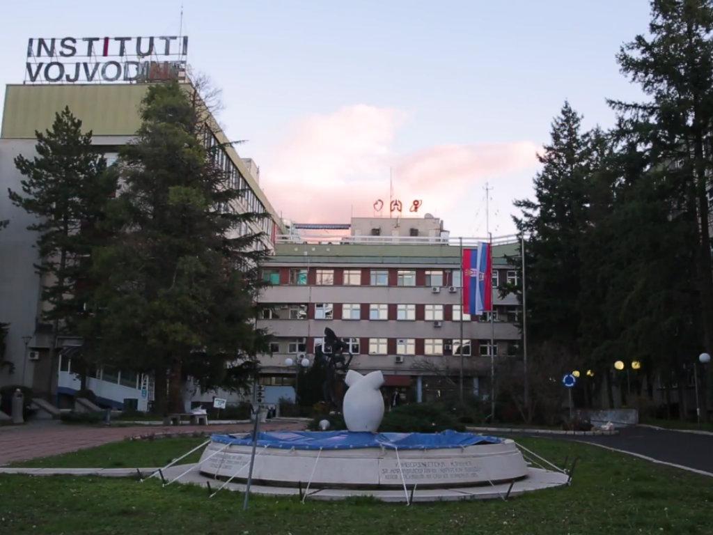 Traži se firma za izgradnju parkirališta i javnog osvetljenja kod Instituta u Sremskoj Kamenici - Vrednost posla 26,7 miliona dinara