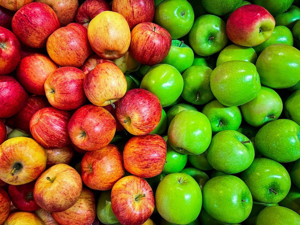 Zemljoradnička zadruga Voćar gradi solarnu elektranu i ulaže u sortiranje voća