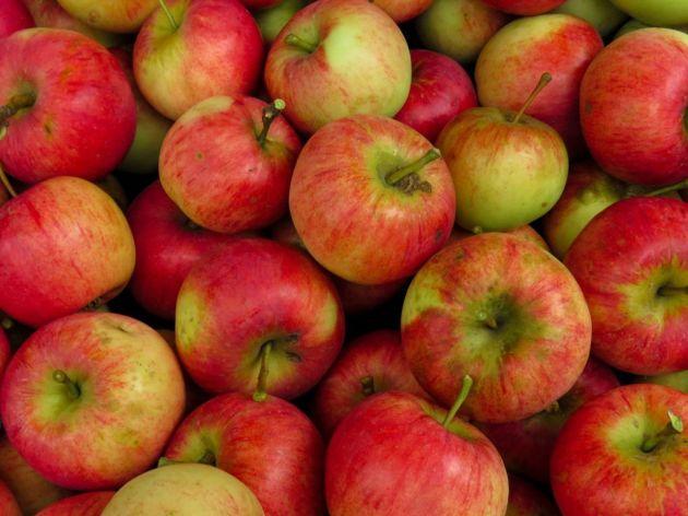 Stubaste jabuke - Visoki prinosi na malim površinama