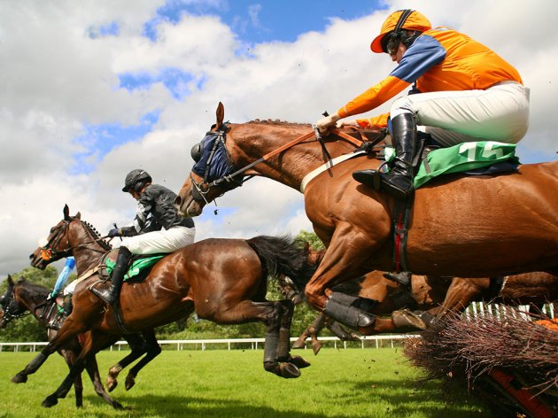 Čačak želi da očuva tradiciju konjičkog sporta - U planu staza za galopere