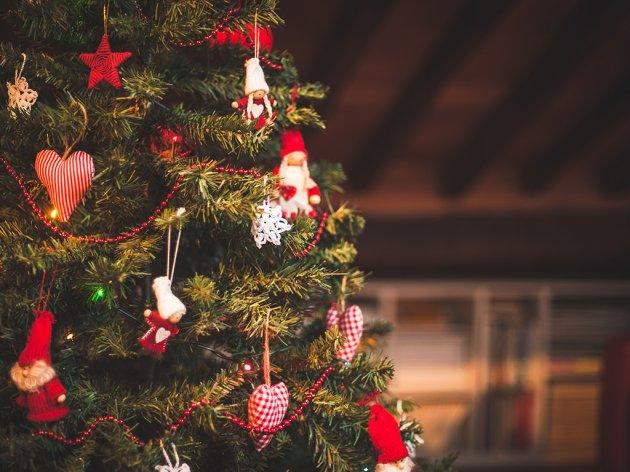 Beč će od božićnih jelki proizvoditi električnu i toplotnu energiju