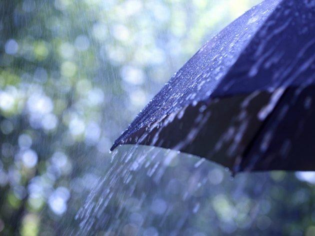 Kiša najmoćniji prirodni sedativ