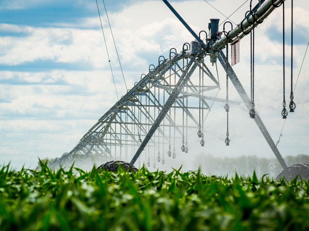 Poljoprivrednici iz Srbobrana i Turije uskoro će svoje zalivne sisteme moći da priključe na dve nove trafostanice