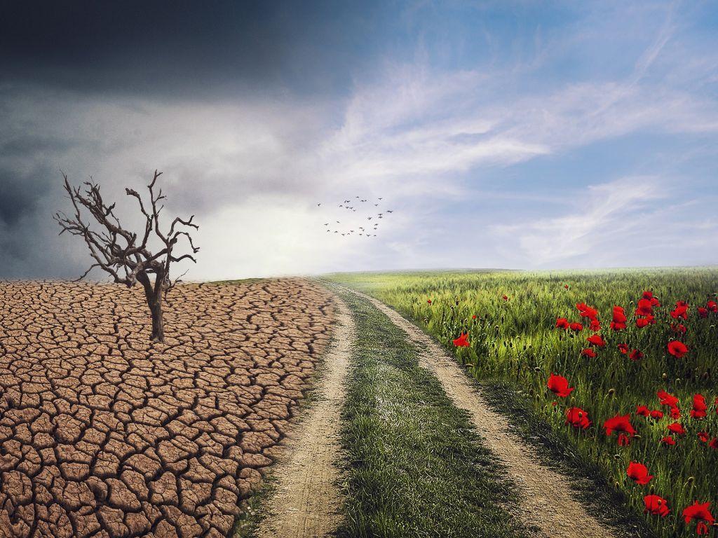 """PKS poziva privrednike da se prijave za učestvovanje u poslovnoj delegaciji na """"Dubai Ekspo 2020"""" - Tema prve nedelje je """"Klima i biodiverzitet"""""""