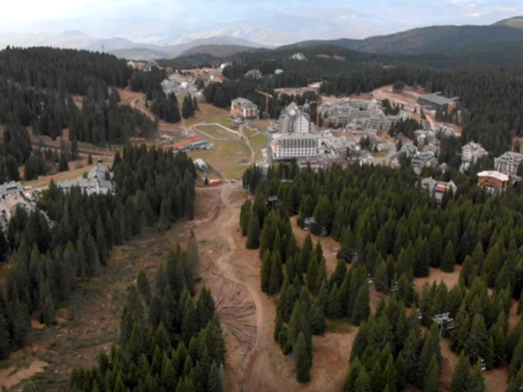 Otpočela akcija pošumljavanja u ski centru Kopaonik - U planu je da se zasadi 20.000 stabala smrče
