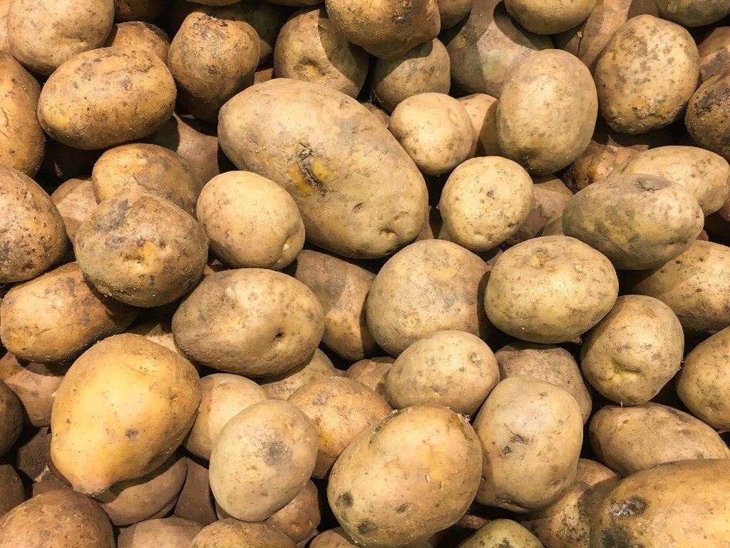Država posreduje u prodaji zaliha domaćeg krompira