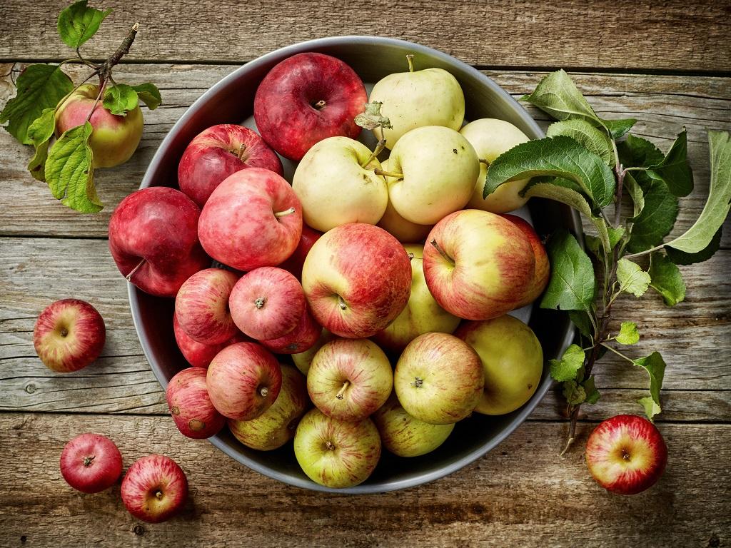 Lidl na internacionalnom nivou razvija prvi standard za uzgajanje voća i povrća sa ciljem očuvanja biodiverziteta