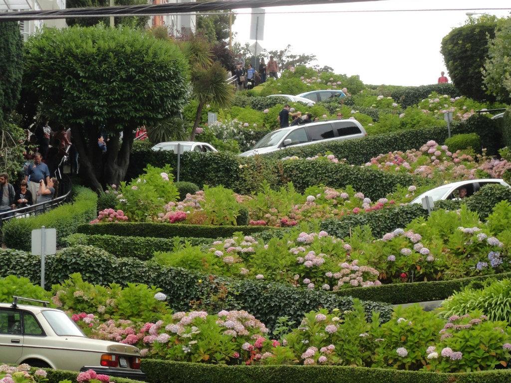 San Francisko će početi da naplaćuje razgledanje najkrivudavije ulice na svetu